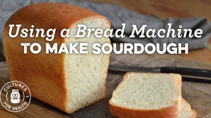 Top 10 Greatest Bread Machine Reviews